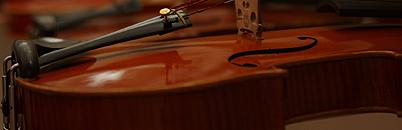 弦楽器販売